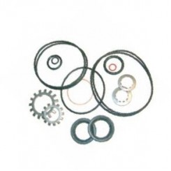 Seal Kit, Gear Housing 9-77904
