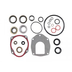 Seal Kit, Lower Unit 9-74206
